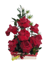 Baú de Rosas  Carollas