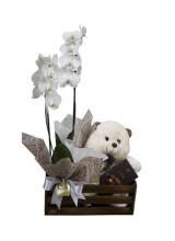 Cachepot com orquídea